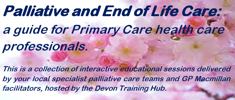 Palliative and End of Life Care: Why Palliative Care Matters